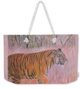 Adult Male Tiger Of India Striding At Sunset  Weekender Tote Bag