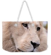 Male White Lion ... Thabo Weekender Tote Bag