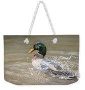Mallard Duck Bathing Time In Dam Weekender Tote Bag