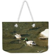 Mallards 1 Weekender Tote Bag