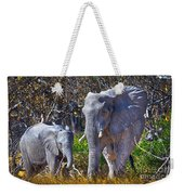 Mama And Baby Elephant Weekender Tote Bag