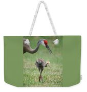 Mama And Juvenile Sandhill Crane Weekender Tote Bag by Carol Groenen