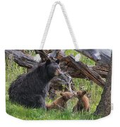 Mama Black Bear With Cinnamon Cubs Weekender Tote Bag