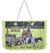 Mama Llama Weekender Tote Bag