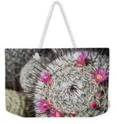 Mammillaria Cactus With Small Flowers Weekender Tote Bag