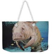 Manatee Swimming Underwater Weekender Tote Bag