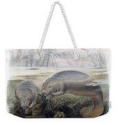 Manatees, Vulnerble Species Weekender Tote Bag