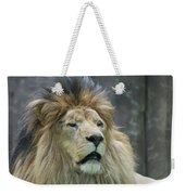 Mane Standing Up Around The Head Of A Lion Weekender Tote Bag