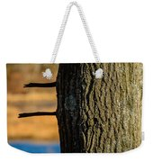The Many Lines Of Nature Weekender Tote Bag