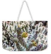 Many Stems Of Poky Small Cactus In Desert Weekender Tote Bag