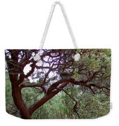 Manzanita Tree By The Road Weekender Tote Bag