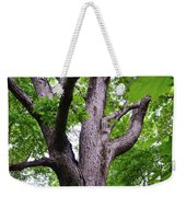 Maple Branches Weekender Tote Bag