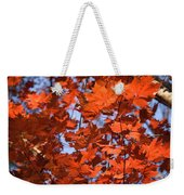 Maple Leaves Aglow Weekender Tote Bag