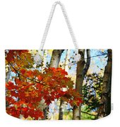 Maple Leaves And Birch Bark Weekender Tote Bag