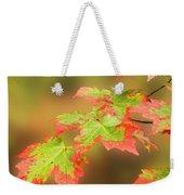 Maple Leaves Changing Weekender Tote Bag