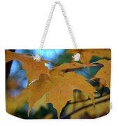 Maple Leaves In Autumn Weekender Tote Bag