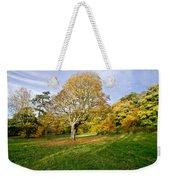 Maple Tree On The Slope. Weekender Tote Bag