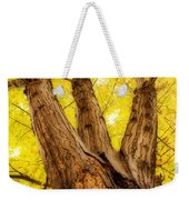 Maple Tree Portrait 2 Weekender Tote Bag