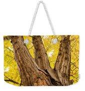 Maple Tree Portrait Weekender Tote Bag