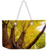 Maple Tree Poster Weekender Tote Bag