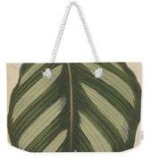 Maranta Fasciata Weekender Tote Bag