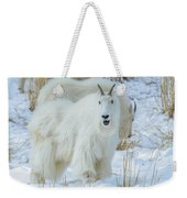 March Madness Weekender Tote Bag