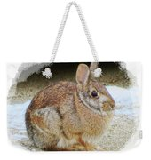 March Rabbit With Vignette Weekender Tote Bag