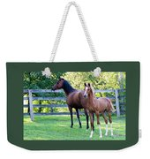Mare And Colt Weekender Tote Bag