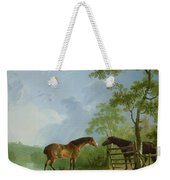 Mare And Stallion In A Landscape Weekender Tote Bag