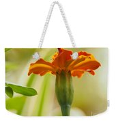 Marigold On A Lovely Spring Day Weekender Tote Bag