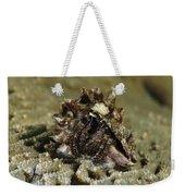 Marine Hermit Crab Weekender Tote Bag