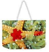 Marine Life, Close-up Weekender Tote Bag