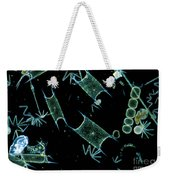 Marine Phytoplankton Weekender Tote Bag by DP Wilson and Photo Researchers