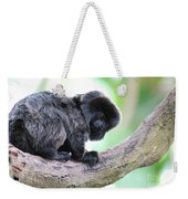 Marmoset Sitting Perched In A Tree Weekender Tote Bag