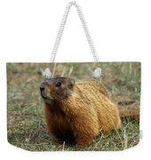 Marmot Weekender Tote Bag