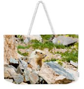 Marmot On Mount Massive Colorado Weekender Tote Bag