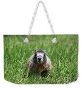 Marmot Pup Weekender Tote Bag