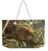 Marsh Life Weekender Tote Bag