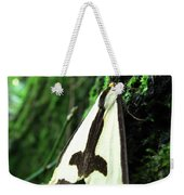 Maryland Clymene Moth Weekender Tote Bag