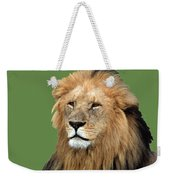 Masai Mara Lion Portrait    Weekender Tote Bag by Aidan Moran