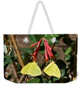 Matched Pair Of Sulfur Butterflies Weekender Tote Bag