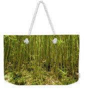 Maui's Thick Bamboo Weekender Tote Bag