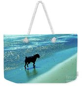 Maxwell On The Beach Weekender Tote Bag