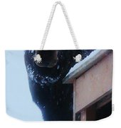 May I Come In Weekender Tote Bag