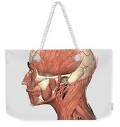 Medical Illustration Showing Human Head Weekender Tote Bag