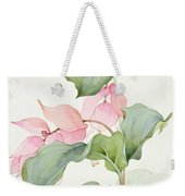 Medinilla Magnifica Weekender Tote Bag by Sarah Creswell