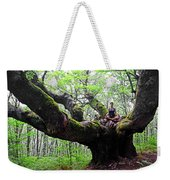 Meditation On Centenary Tree  Weekender Tote Bag