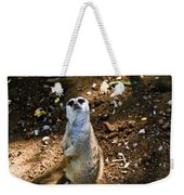 Meerkat     Say What Weekender Tote Bag