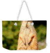 Meerkat 2 Weekender Tote Bag