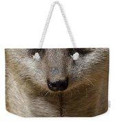 Meerkat Looking At You Weekender Tote Bag